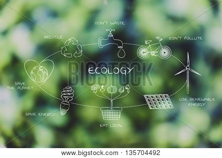 Everyday Ecology Actions Diagram