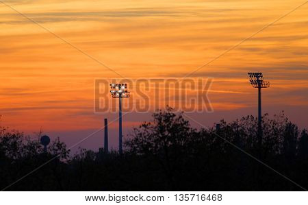 floodlight and silhouette of trees during sunrise/sunset