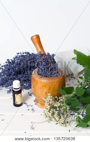 shredding medicinal herbs lavender in a pounder
