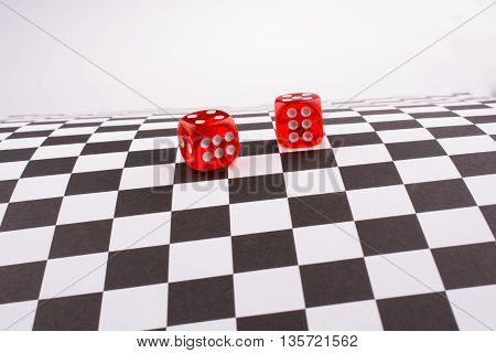 Red color dice on a checked background