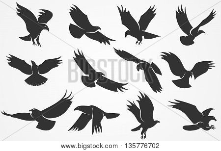 Vector set of silhouettes of eagles isolated on a gray background