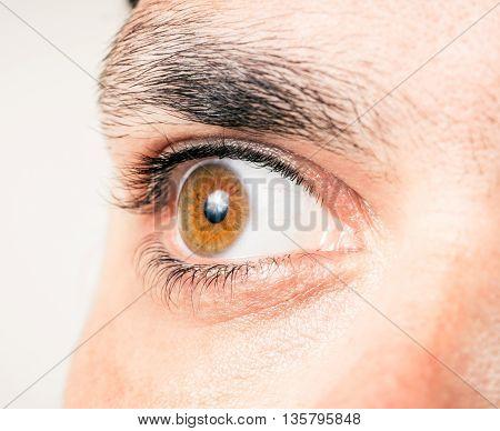 close up of male eye macro shot