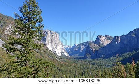 The distinctive rock El Capitan in Yosemite National Park in California, granite boulders, large forests and blue sky
