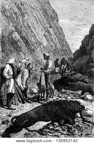 Soldier explorers and Makololo tribe native hunters with a dead lion in South Africa. From Jules Verne 3 Russians and 3 English Book, vintage engraving, 1871.
