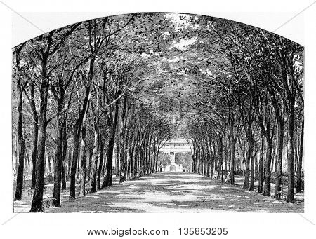 Park in front of the Pitie-Salpetriere Hospital in Paris, France. Vintage engraving.