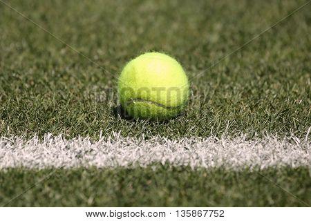 Tennis ball on grass tennis court, sunny day