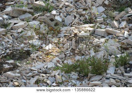 Ruins of an old abandoned factory with concrete walls - debris detail
