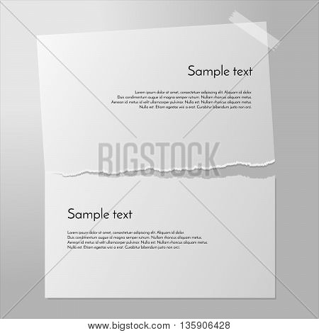 Teared paper vector. Page cut in half. Piece of paper on the wall with sticky tape. Tearing paper apart. White paper banners.