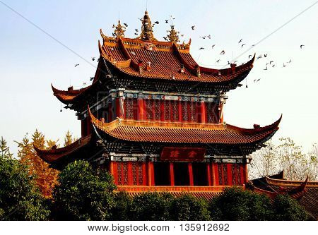 Chengdu China - November 28 2007: A flock of doves circles the ornate bell tower with its flying eaved roofs at the Zhao Jue Temple
