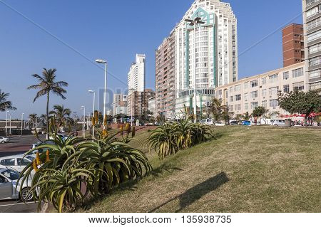 Grass Verge And Aloe Plants Against City Skyline