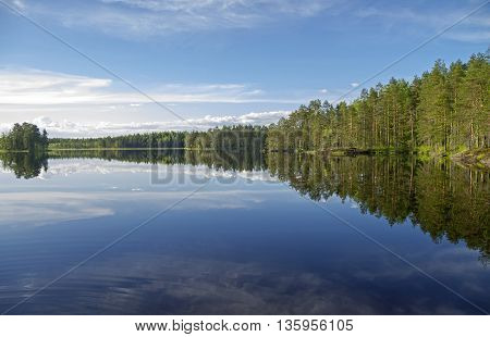 Forest lake in the evening. June. South Karelia Russia.