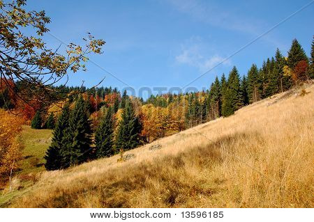 Autumn landscape in hills in Poland