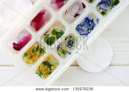Herbal ice cubes, summer refreshing skincare. Various fresh frozen herbs flowers, cotton pads, top view.