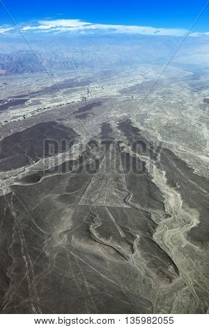 view from plane on the geoglyphs Nazca