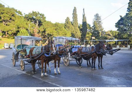 Buyukada Phaeton (carriage). Buyukada Princes' Islands also known as Istanbul is the largest of the islands off the coast.