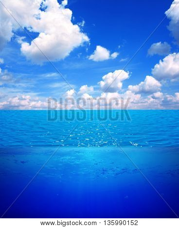 Underwater scene and blue sky with white clouds. Water surface split by waterline. 3d render