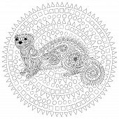 Hand drawn ferret in zen tangle style with high details. Coloring page for anti-stress art therapy. Black white hand drawn zendoodle animal. Sketch for poster, print, t-shirt. Vector illustration. poster