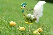 easter chicken with eggs in the garden poster