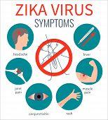 Zika virus symptom icons - fever, headache, muscle pain, joint pain, red eyes, rash. Zika virus infographic elements. No mosquito sign. Transmission. Zika virus design template. Vector illustration. poster