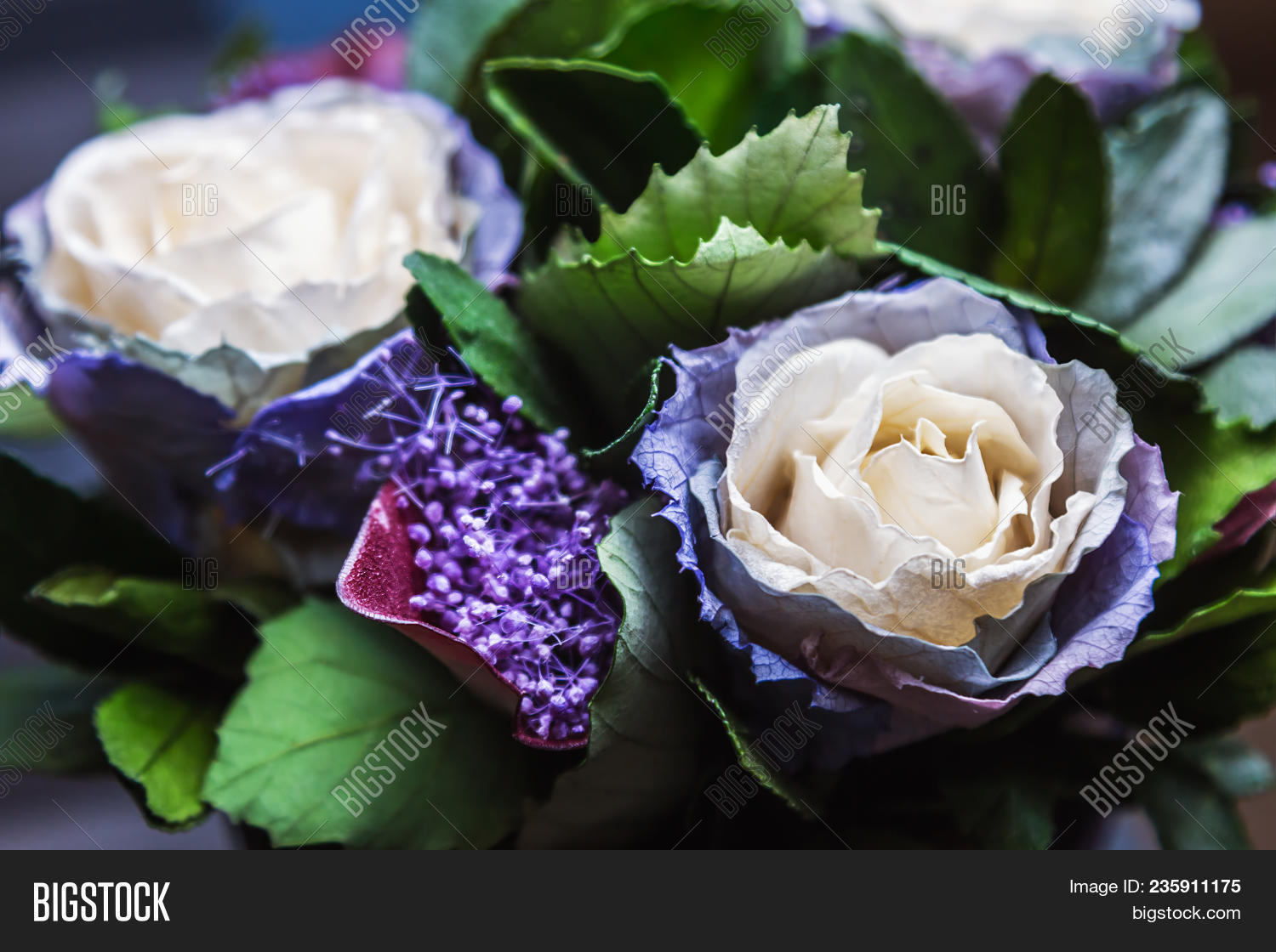Stabilized Rose Image Photo Free Trial Bigstock