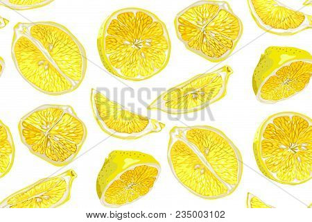 Citrus Seamless Pattern With Halves And Slices Of Fruit. Different Parts Of Lemon Citrus Fruit