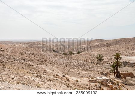A Dry Desert Landscape With Palm Trees And Hills On A Cloudy Day