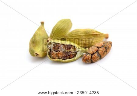 Dried Cardamon Pods Isolated On White Background.
