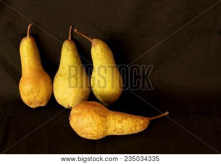 Pears Harvest. Fruit Background. Fresh Organic Pears. Pear Autumn Harvest. Juicy Flavorful Pears On