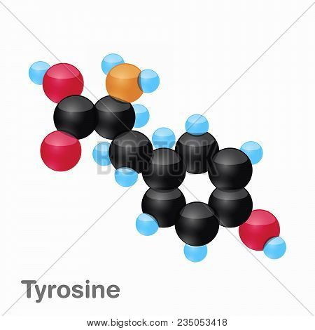 Molecule Of Tyrosine, Tyr, An Amino Acid Used In The Biosynthesis Of Proteins, Vector Illustration
