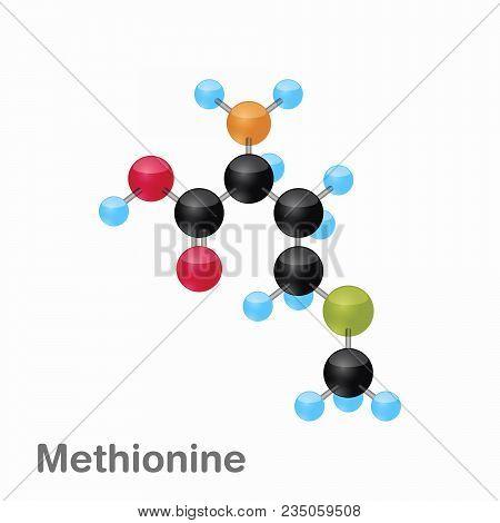 Molecule Of Methionine, Met, An Amino Acid Used In The Biosynthesis Of Proteins, Vector Illustration