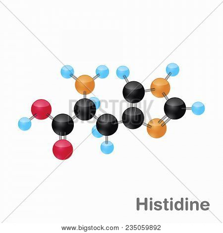Molecule Of Histidine, His, An Amino Acid Used In The Biosynthesis Of Proteins, Vector Illustration