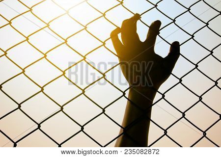 Hand Catching Metal Fence, Feeling No Freedom