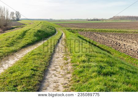 Cart Track Along The Dike Of A Dutch Nature Reserve On The Border Of Farmland. It Is Early In The Mo