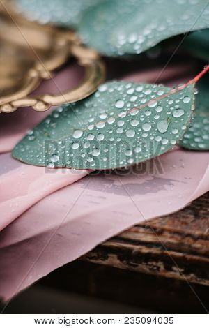 Green Leaves Of A Wedding Decor With Raindrops Close-up, Macro