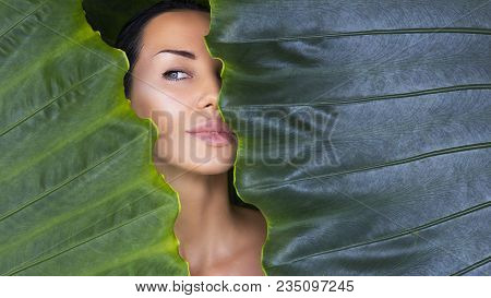 Beautiful Woman Face With Natural Nude Make-up On A Tropical Leaf Background. Healthy Life. Recreati