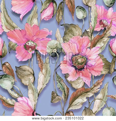 Beautiful Pink Poppy Flowers On Lilac Background. Pastel Colored Seamless Floral Pattern. Watercolor