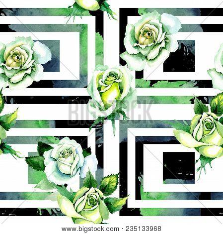 Whit Roses. Floral Botanical Flower. Wild Spring Leaf Wildflower Pattern. Aquarelle Wildflower For B
