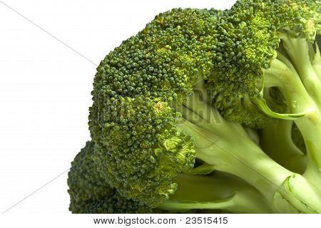 Broccoli Cabbage Closeup