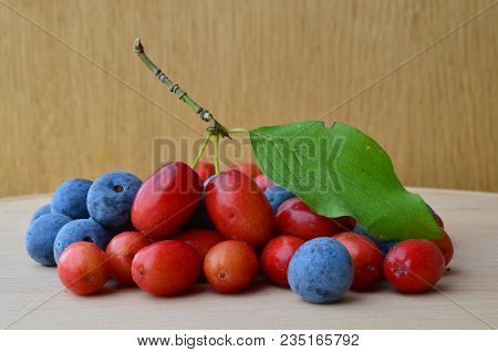 Pile Of Organic Red Cornelian Cherries And Blue Blackthorn Or Sloe Berries, Nutritive And Curative,