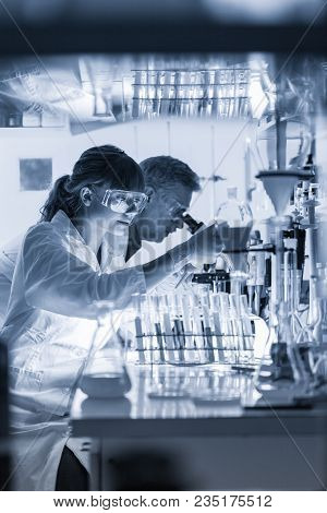 Health Care Researchers Working In Life Science Laboratory. Young Female Research Scientist And Seni