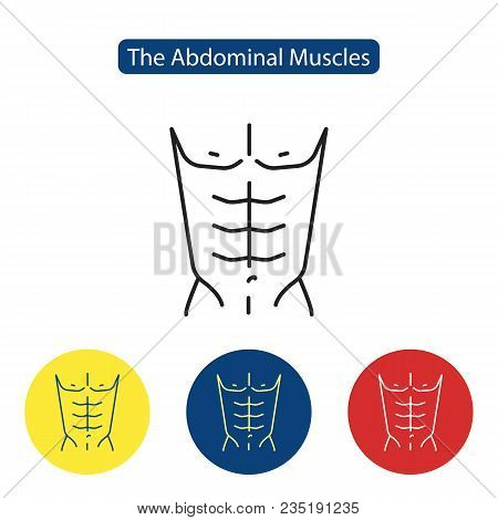 The Abdominal Muscles Fit Icon. Perfect Abdominal Muscles Of Bodybuilder Athletic Man Torso Flat Ico