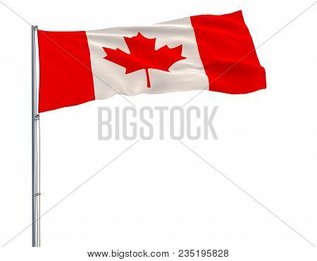 Isolate Flag Of Canada On A Flagpole Fluttering In The Wind On A White Background, 3d Rendering