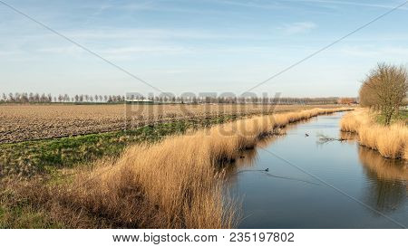 Creek On An Early Windless Morning In The Dutch Spring Season. There Is A Plowed Field Next To The C