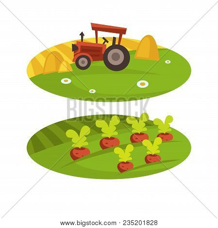 Farm Harvesting Or Farmland Household And Farmer Agriculture Flat Cartoon Icons. Vector Tractor On W