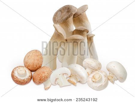 Several Fresh Cultivated King Trumpet Mushrooms, Brown Mushrooms And Common Button Mushrooms On A Wh