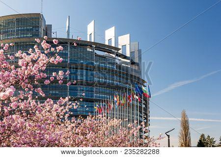 Strasbourg, France - April 6, 2018: European Parliament Headquarter With Cherry Tree In Bloom Sakura