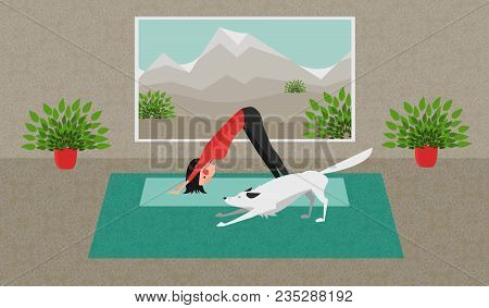 The Young Woman Practicing Yoga. The White Dog Stretching Itself In The Same Position. Downward Faci