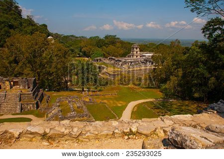 Palenque, Chiapas, Mexico, Mayan Temple Ruins Surrounded By Dense Jungle. Palenque Was Declared A Wo