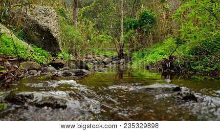Natural Landscape With Rain Water At The End Of Winter, Valsequillo, Canary Islands