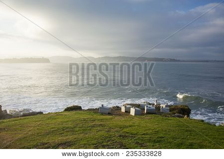 Photo Of A Landscape With Green Grass, Sea And Sunlight